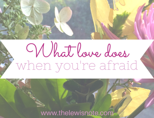 What love does when you're afraid